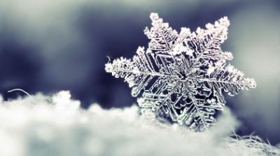 Winter Morning By: Muhammad Ikram-Ul-Haq