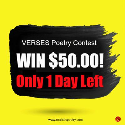 VERSES $50.00 Poetry Contest - Contestant #42 mohammed shamsuldain khan Al badri