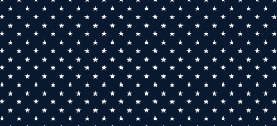 Stars and Stripes by: Prince McNally