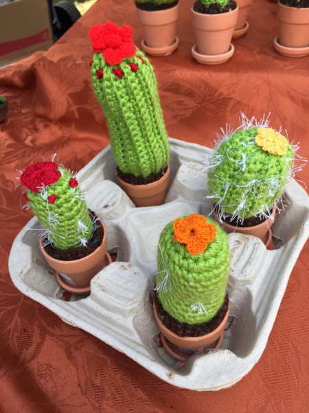 Amigurumi Cacti To Go   From the Everlasting Collection