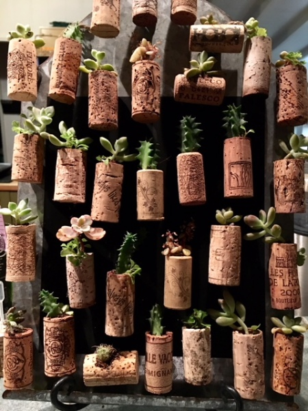 Living Cork Magnets