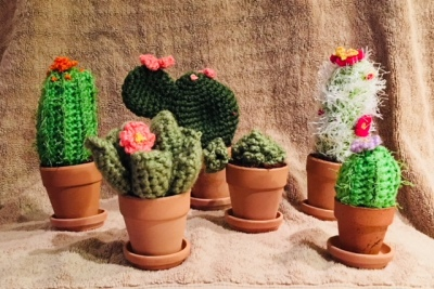 Crochet Cactus Anytime of the Year.