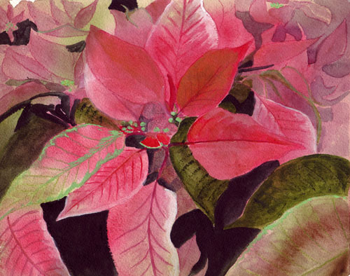 "<img src=""poinsetta floral painting.jpg"" alt=""original watercolor painting"">"