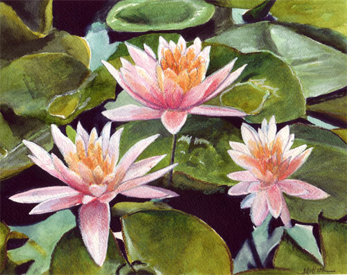 "<img src=""3 pink water lily  floral painting.jpg"" alt=""original watercolor painting"">"