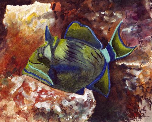 FISH500px