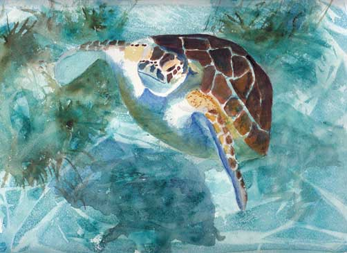 GreenSea Turtle