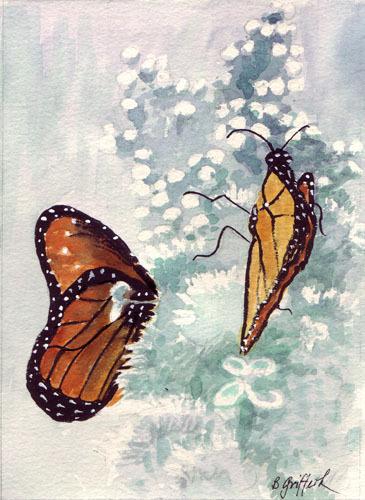 Butterflies500