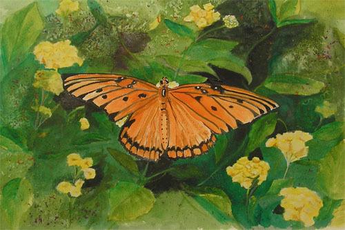 Butterfly500