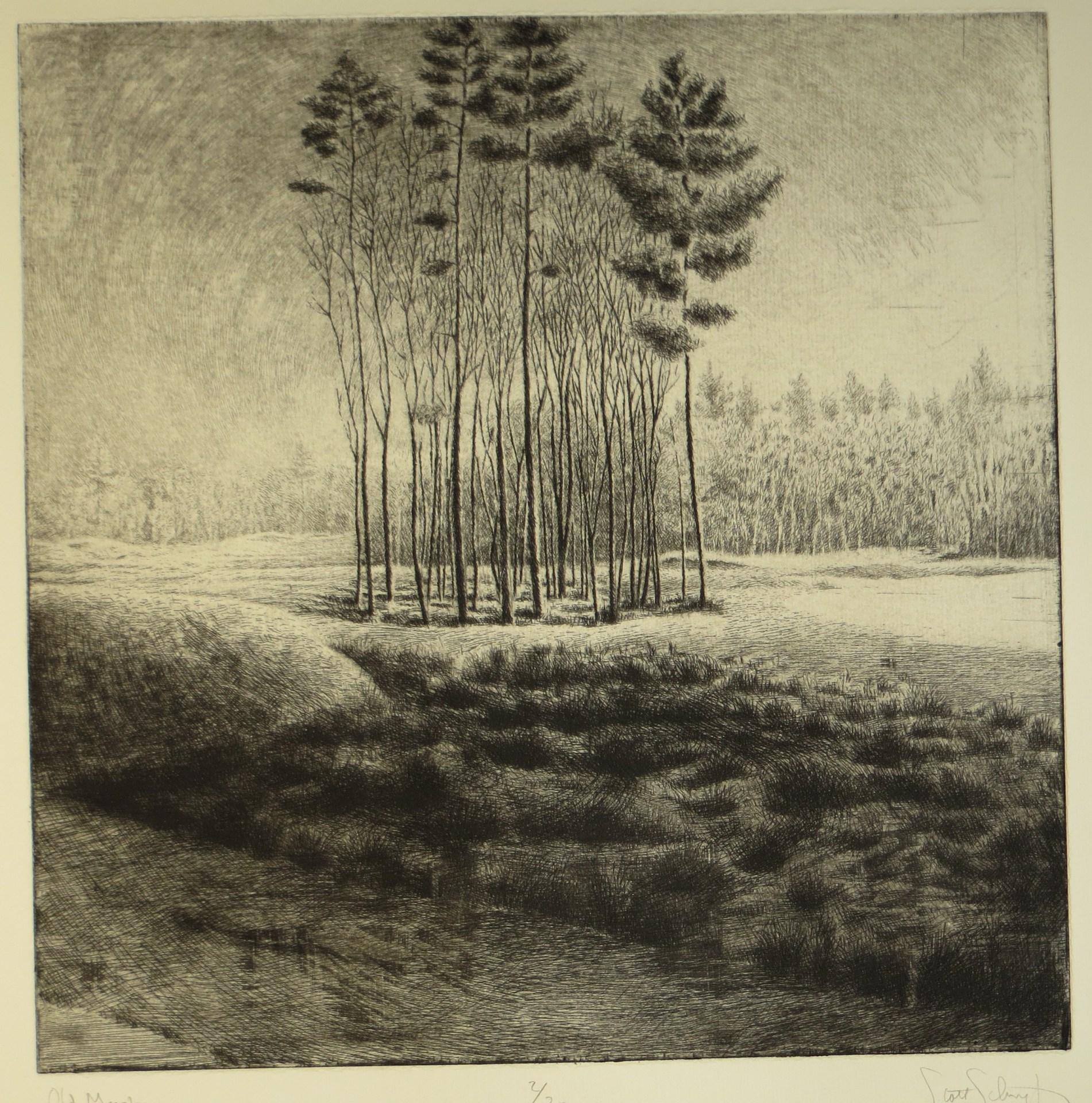 Old Marsh