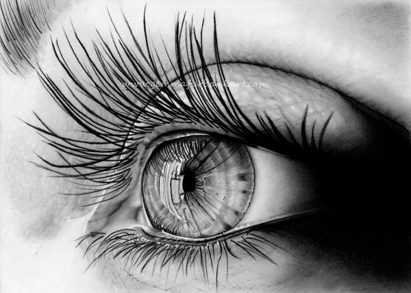 06. Eye study.