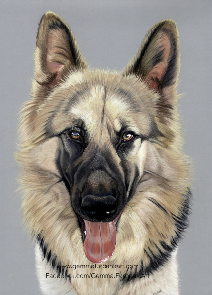 'Prince' German Shepherd in Soft Pastel
