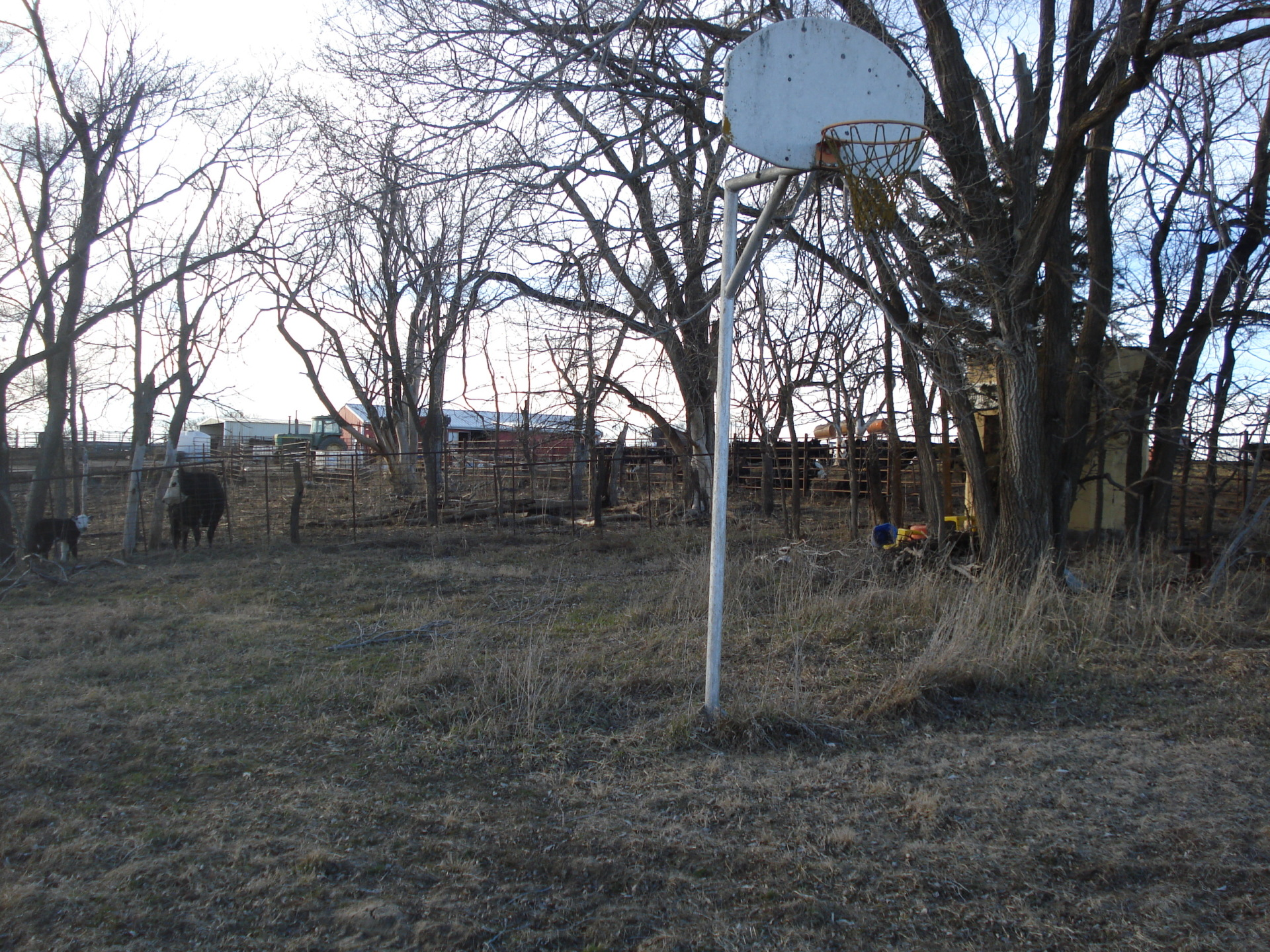 view of yard with basketball goal