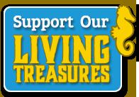 Support the NC Aquarium