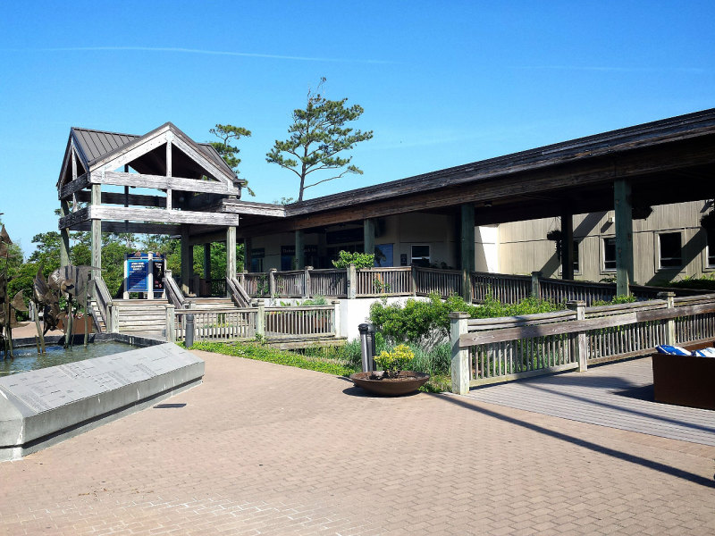 NC Aquarium in Pine Knoll Shores
