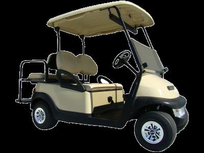 Rental Golf Carts