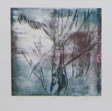 Trees, 2007 (10/10)