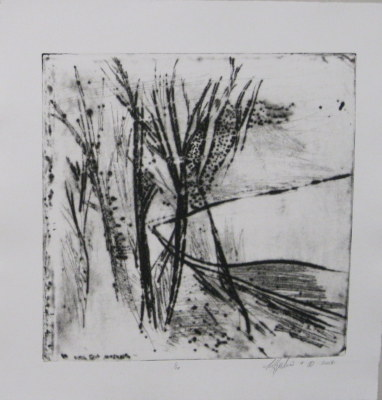 Field and Forest, 2007 (1/10).