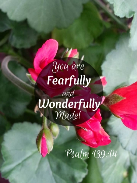 Psalm139:14