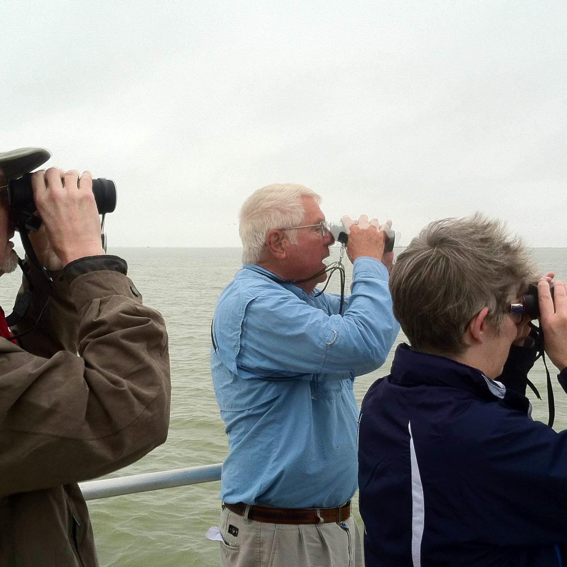 Birding Aransas National Wildlife Reguge
