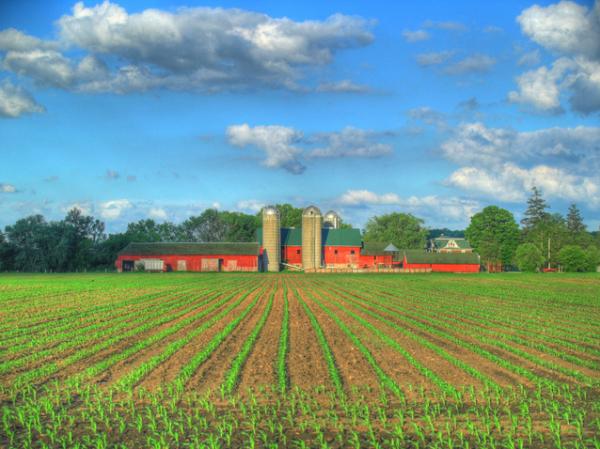 Farm Sales 2