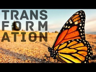 Are We Transformational?