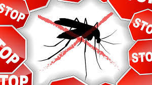 Save $50 on 901 Mosquito Control Services from 901 Pest Control