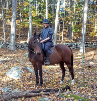 Horse lessons for Adults, Oakdale, CT