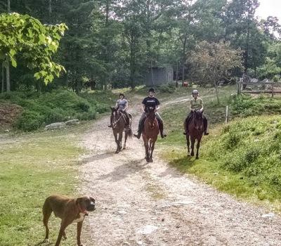 Horseback Riding Lesson, CT