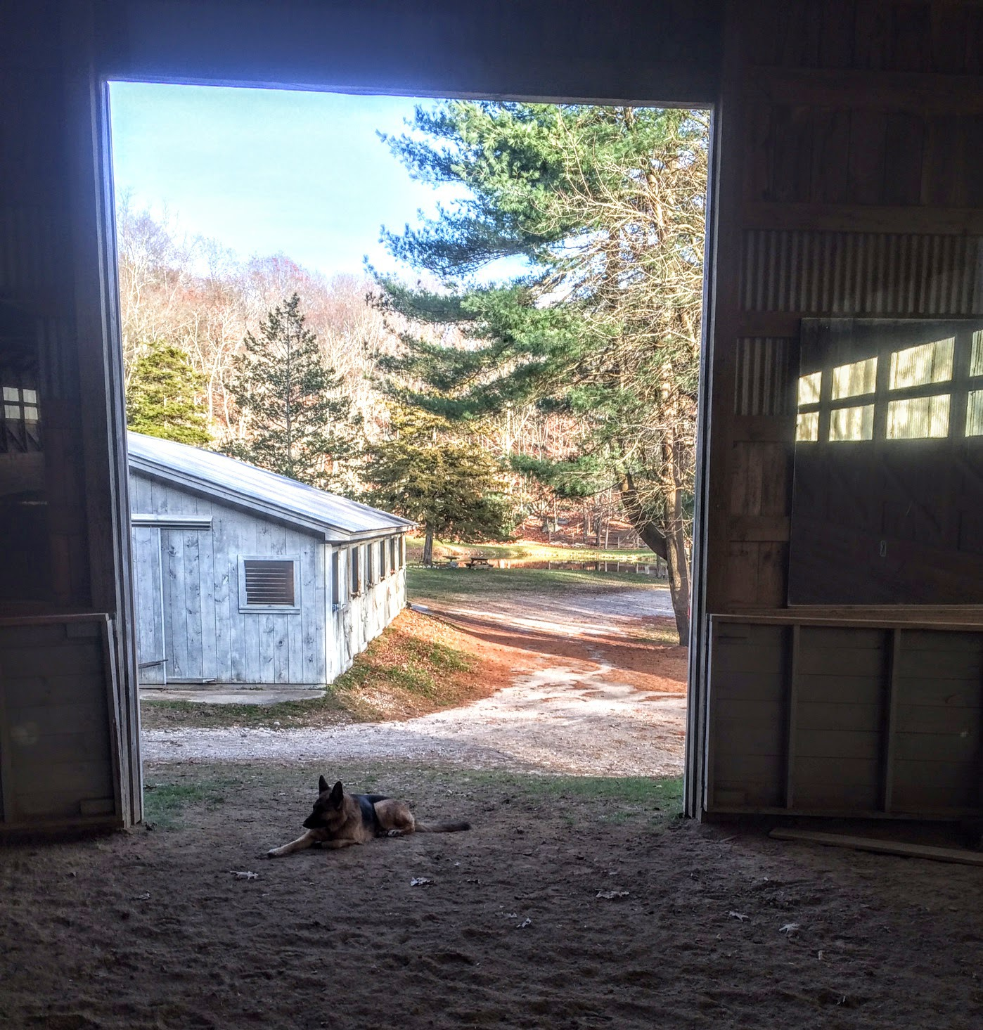 Indoor Arena for Horse Riding Lessons, CT