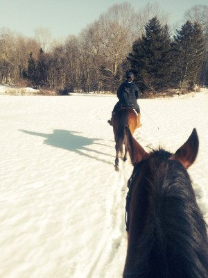 Horseback Riding Lesson in SE, CT