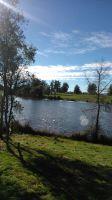 the lagoon / la laguna