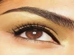 Beautiful Eyebrow