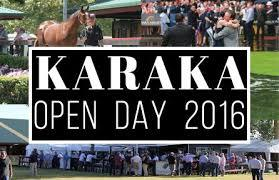Karaka Open Day 2016 - Authorised Syndicators
