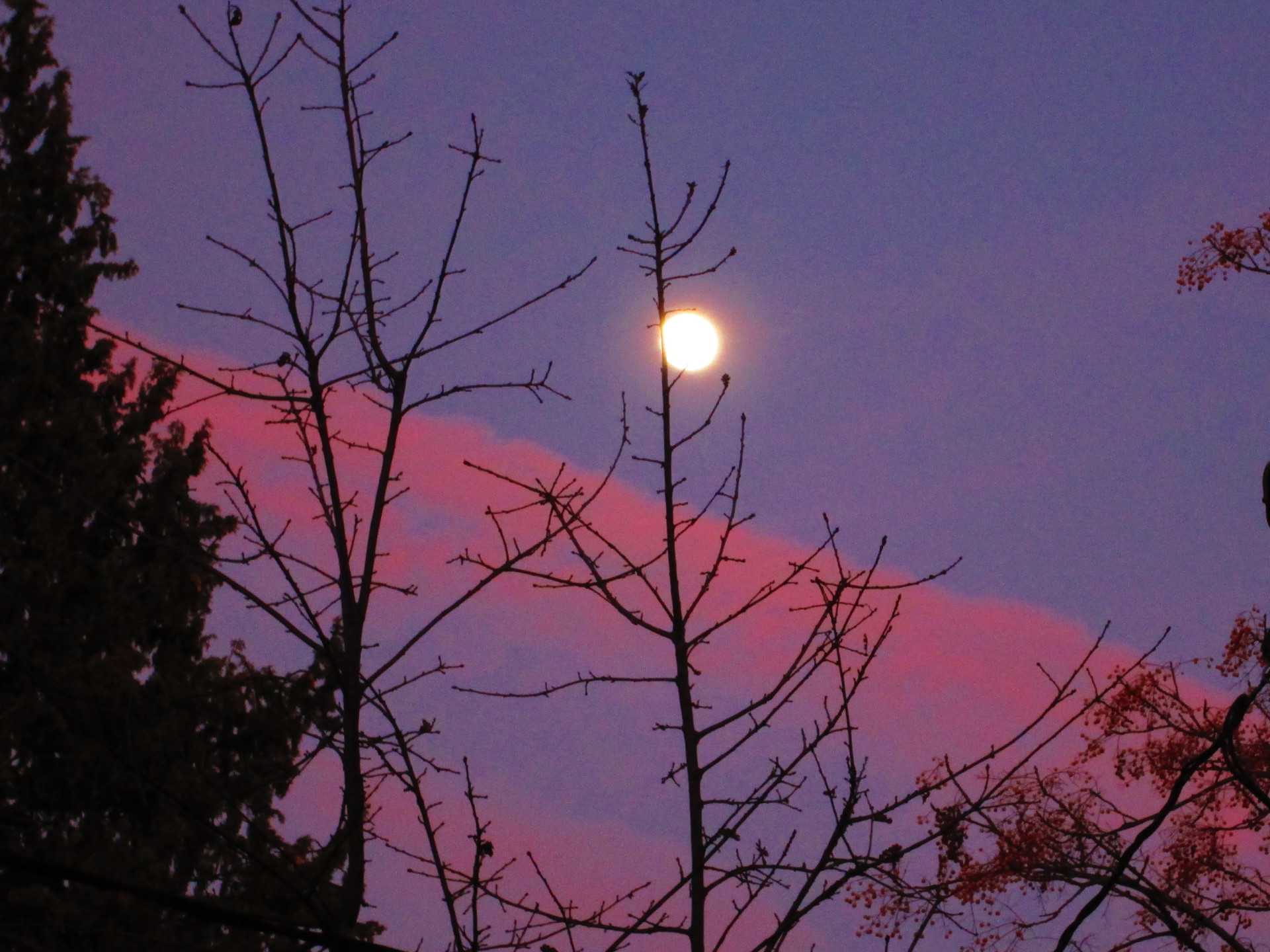 The Moon Rise over Ojai