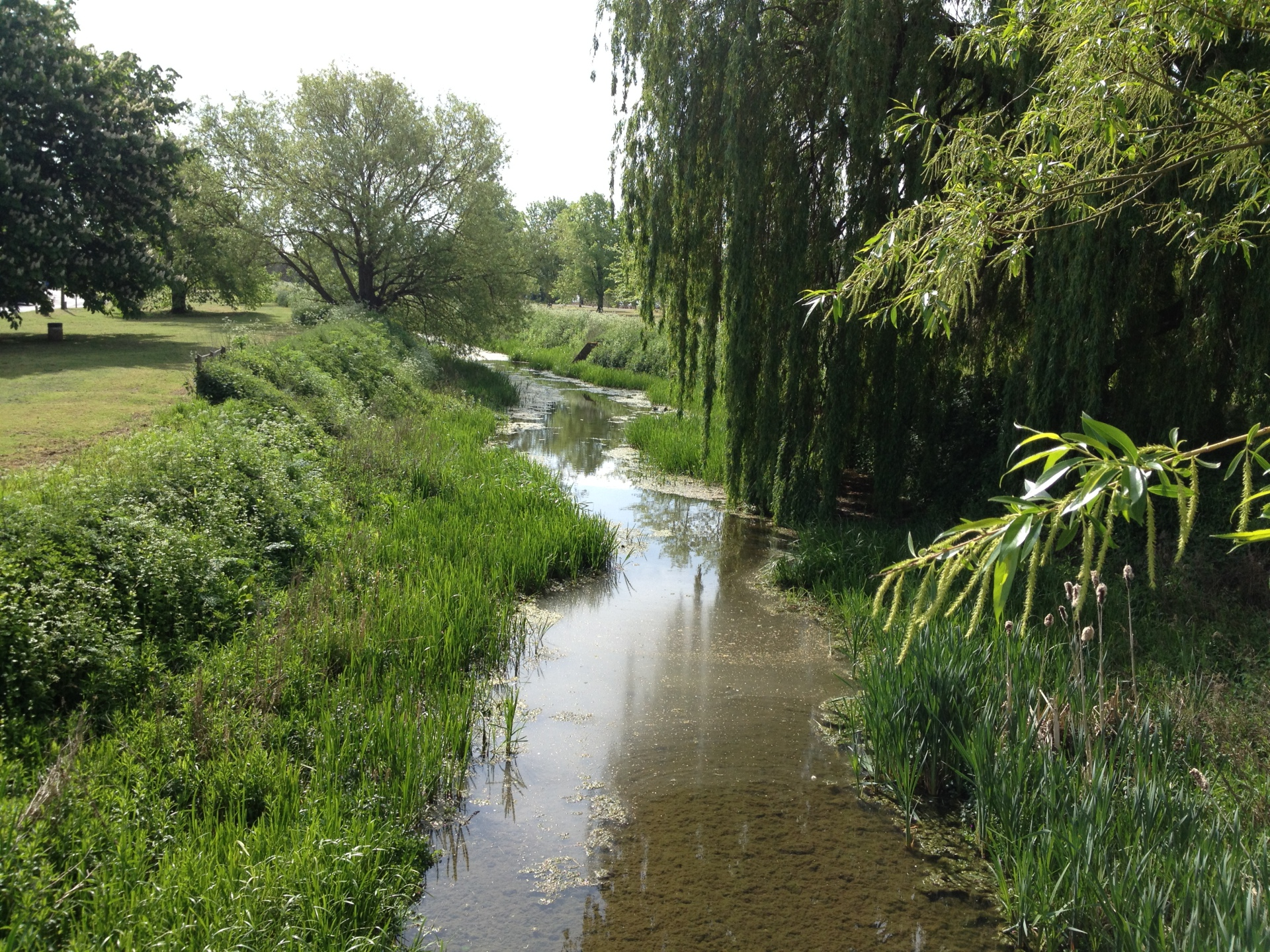 Alconbury Brook