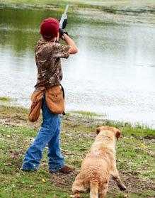 Training a dog for retrieval
