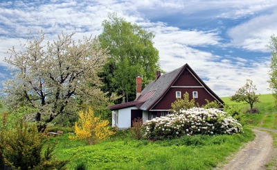 Rural Farmhouse in Spring