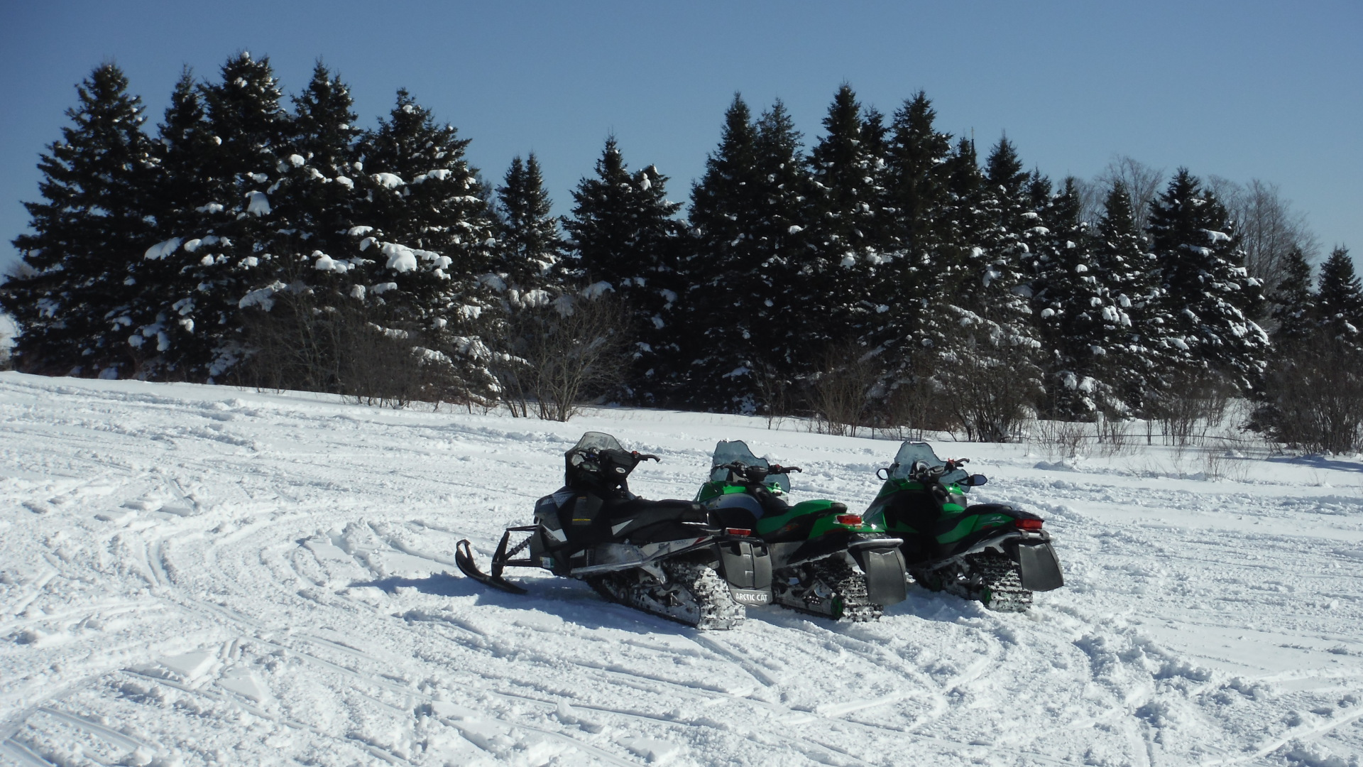 three snowmobilesin field