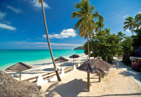 Tropical Island beach image