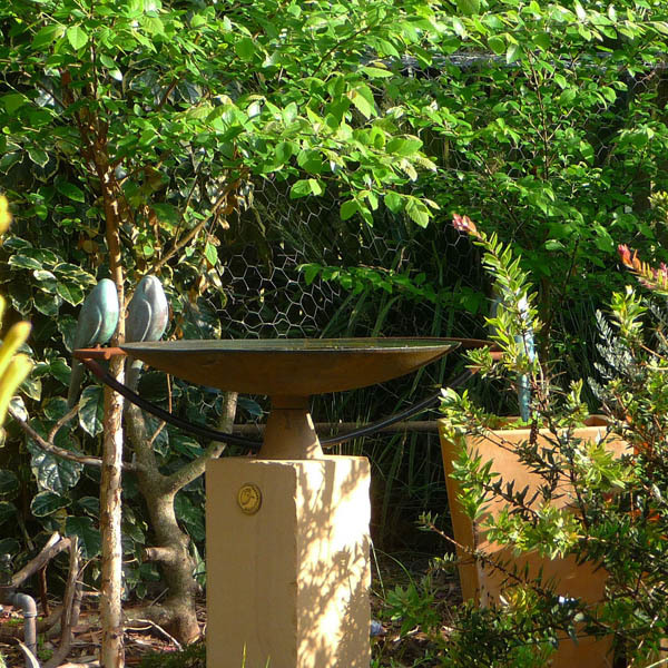 'Folko Kooper' birdbath feature
