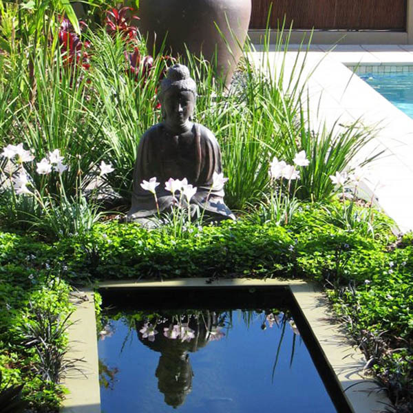 Buddha reflection pond