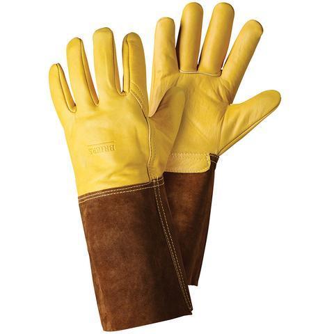 Briers gloves