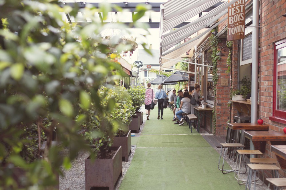 Street food market auckland