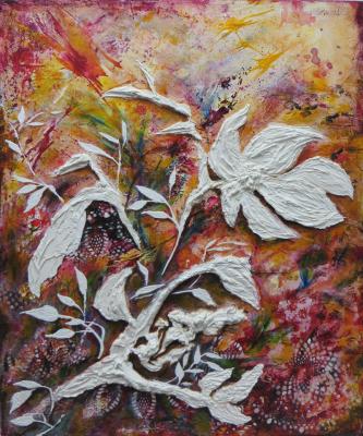 White Dove Beauty
