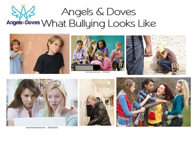 Angels & Doves Anti-Bully Program