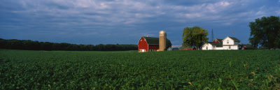 New Farm and Food Business Accelerator Program