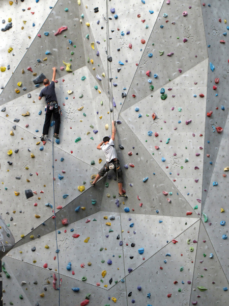 Insurance for Climbing Walls