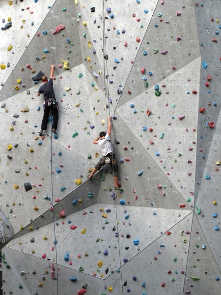 Insurance for Climbing Walls