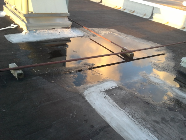 Local commercial roofer