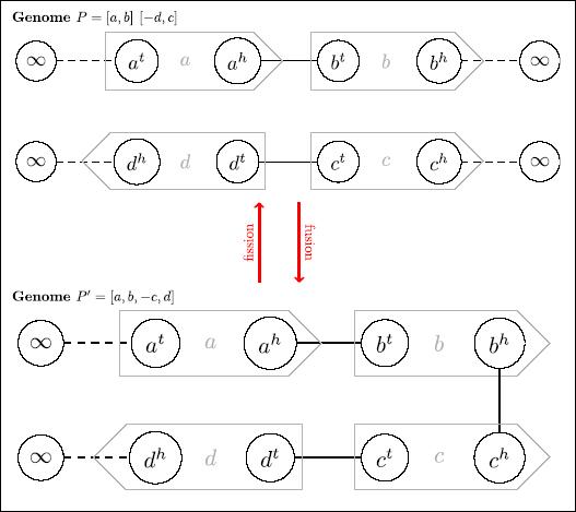 assemb1